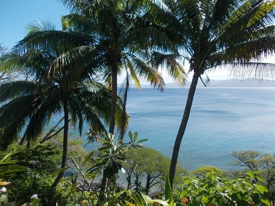 Another gorgeous day from the front deck in Savusavu, Fiji.