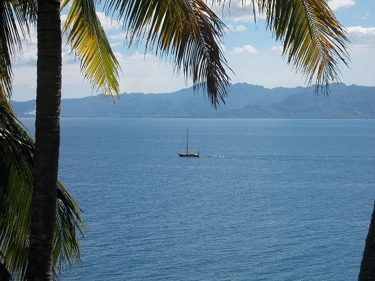 I snapped this shot - while writing this post - from the home office in Savusavu.
