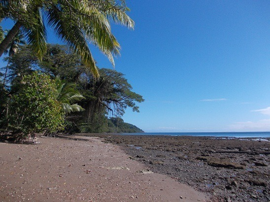 You want volcanic black sand beaches and brilliant blue skies? You got 'em. This beach is a 10 second walk from the front yard in Fiji. Really.