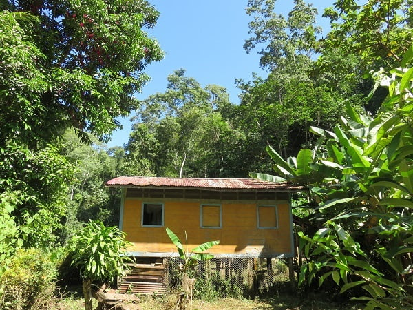 Check out the jungle crib in Costa Rica. It only takes us 3 hours to get there. From the center of town. Up a mile high mountain. Or something like that.