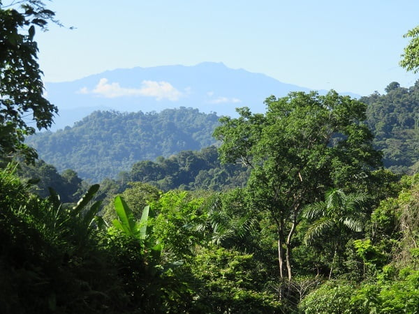 Blogging from Paradise is loving the views in Buena Vista, Costa Rica. Enjoy!